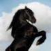 avatar_150649